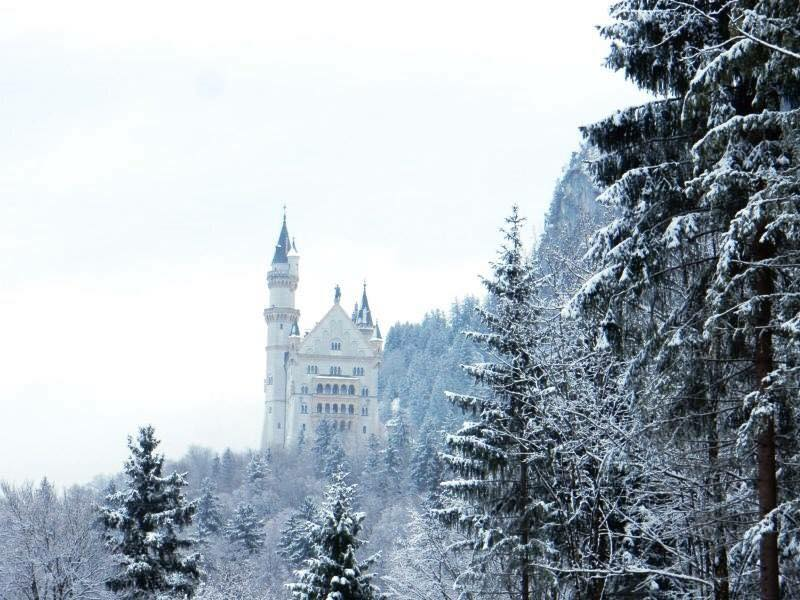 Neuschwanstein castle in wintertime